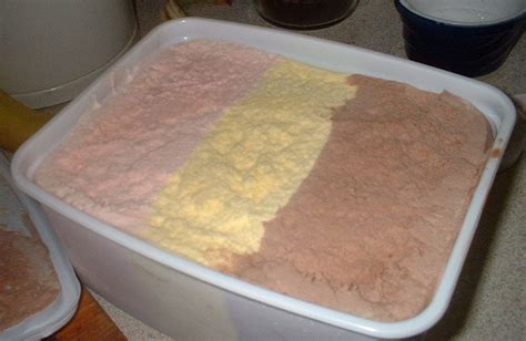 Cara Membuat Ice Cream Neapolitan | file neapolitan ice cream uk jpg wikimedia commons