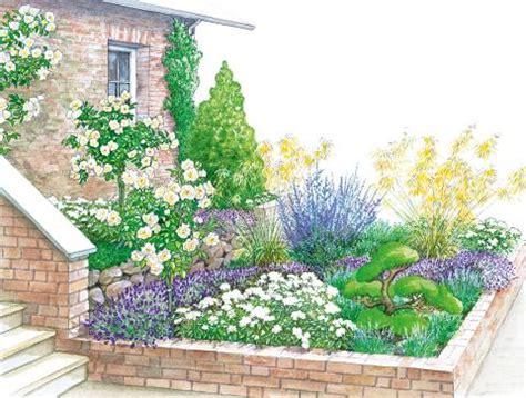 garten im mã rz pflanzen vorgarten mit zierkirsche und kletterrosen mein sch 246 ner