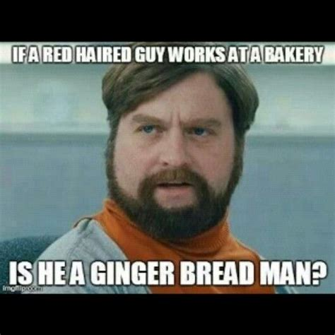 Zach Galifianakis Meme - zach galifianakis lol meme funny pinterest zach