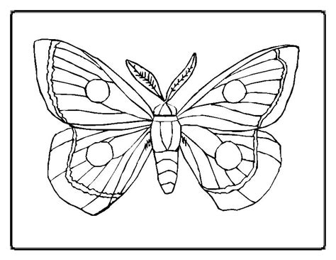 butterfly coloring pages moms who think