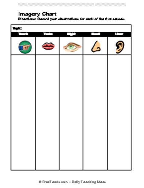 5 senses writing template imagery chart observation organizer freeology
