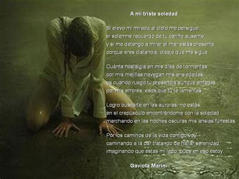 imagenes tristeza de amor y soledad gaviota marin 002 a mi triste soledad amor y