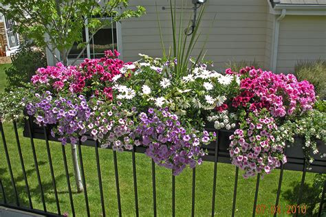 window box planters for railings planter on deck railing window box contest