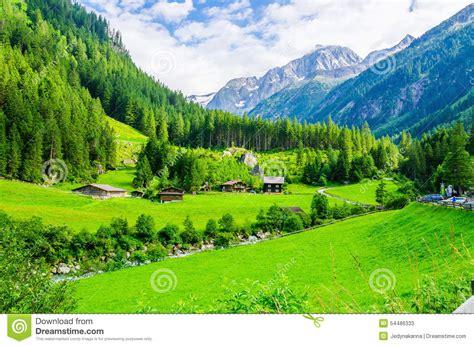 imagenes prados verdes paisaje alpino con los prados verdes monta 241 as austria