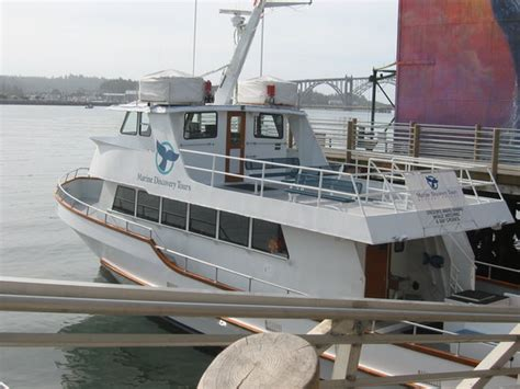 newport boat tours marine discovery tours newport or address phone