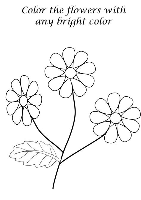a flower s view coloring book for everyone books beautiful flower coloring printable page for