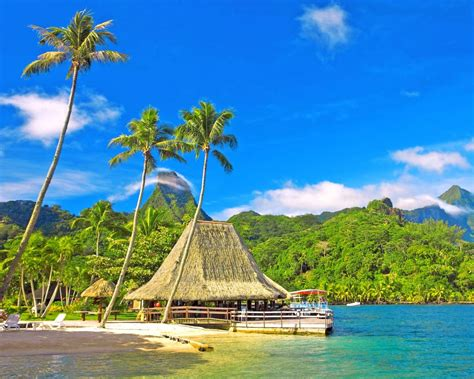 tropical scenery coast palm trees huts bungalows mountains