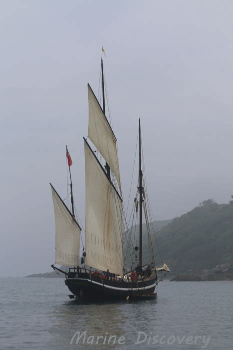 ship greyhound sailing ship greyhound