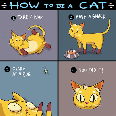 how to do a cat how to be a cat weknowmemes