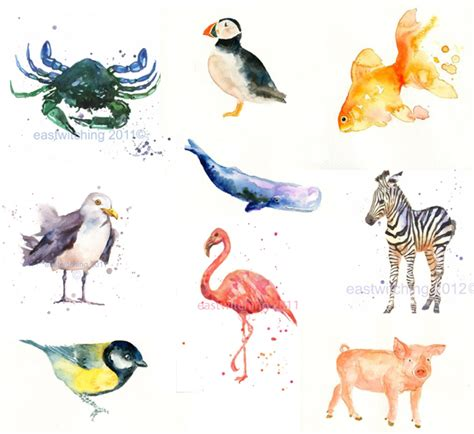 water color animals simple watercolor animals