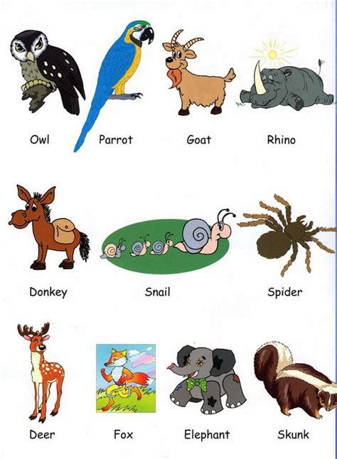 imagenes de animales en ingles y español animales para pintar en ingles y espa 241 ol fotos de