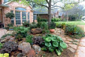xeriscape desoto tx official website