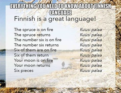 Finnish Language Meme - finnish language memes best collection of funny finnish
