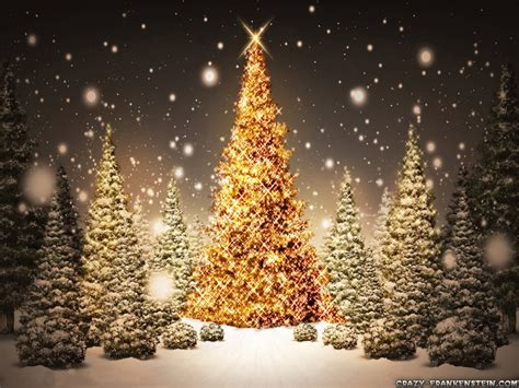 christmas trees christmas wallpaper 17756627 fanpop