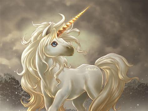 caracteristicas de seres fantasticos seres fant 225 sticos unicornio