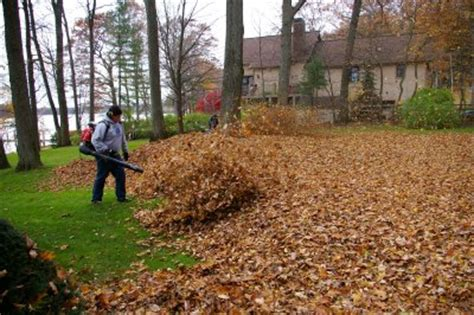 fall clean up leaf clean up trimming shrubbery raking