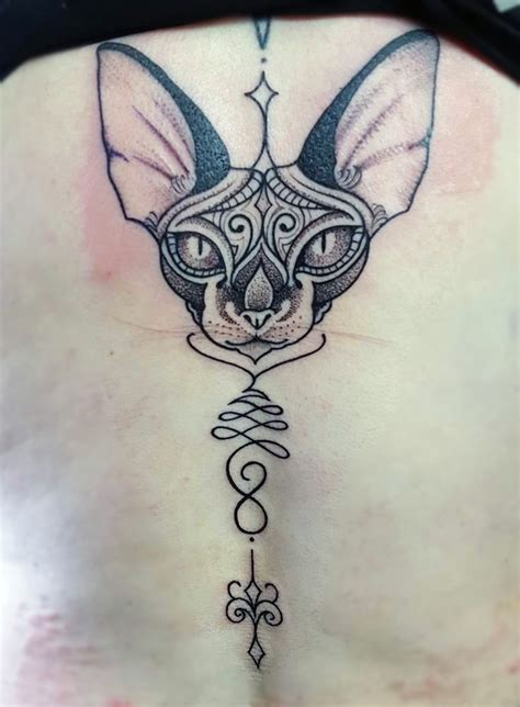 sphinx tattoo best 25 sphynx cat ideas only on