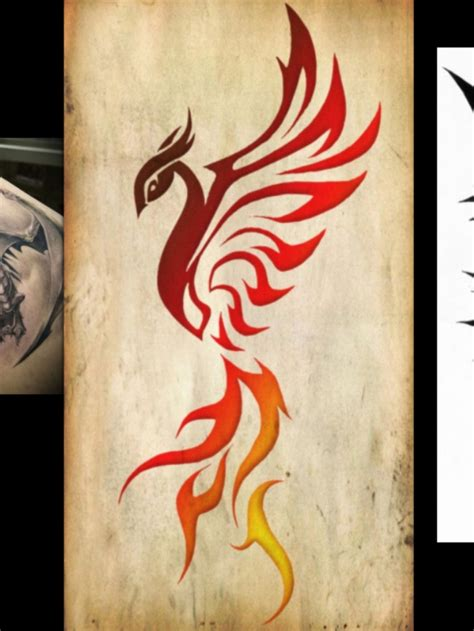 tribal phoenix tattoos pinterest