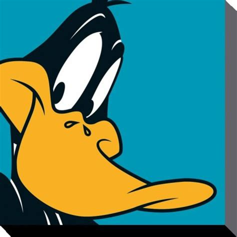 Ch St Donal Pink looney tunes daffy duck www pixshark images