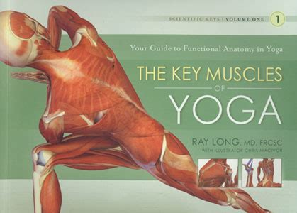 the key muscles of hatha yoga vol 1