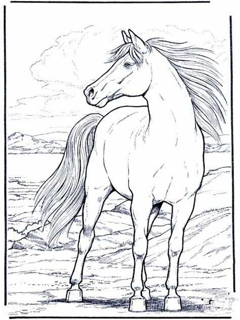 hard coloring pages pinterest hard coloring pages of realistic horse for adults animal