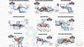 chest exercises for at home how to build a bigger and better chest all bodybuilding