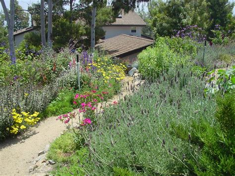 aaron s natural landscaping paisajismo mission viejo