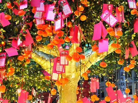new year wishing tree chinatown new year 2014 wishing tree honeykids