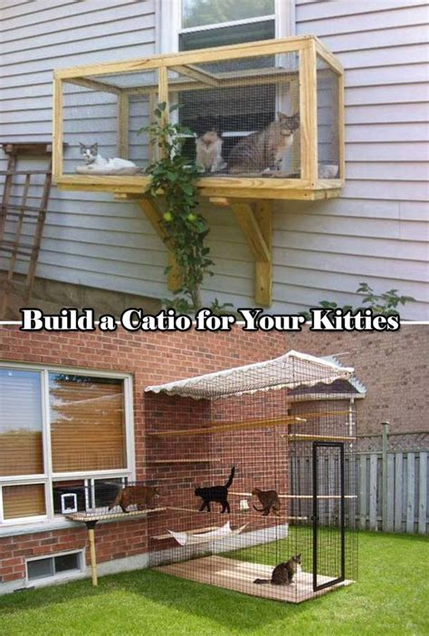 backyard project ideas top 20 brilliant diy backyard projects and tips for your