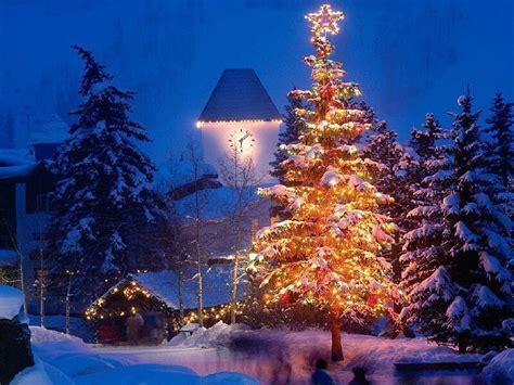 animated christmas trees with snow wallpapers animated lights gif on seasonchristmas merry
