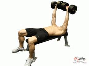 dumbbell and bench workout dumbbell flat bench chest press exercise myfit