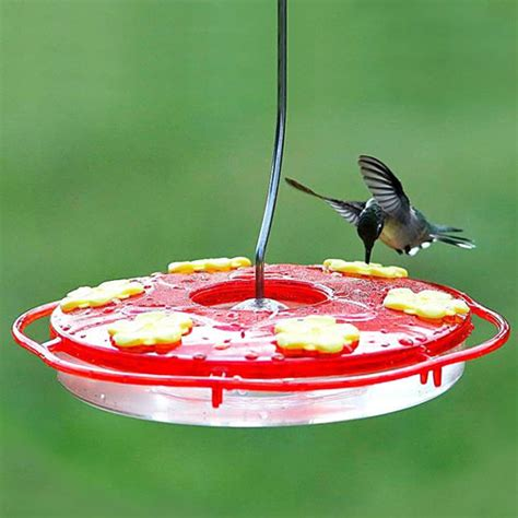duncraft com saucer style hummingbird feeder