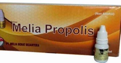 Paket Propolis Melia Sehat Sejahterah Box Original harga terbaru propolis melia 2016
