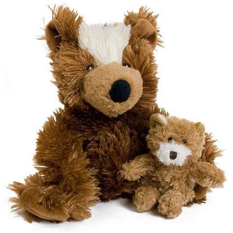 pictures of teddy dogs kong kong teddy squeaky toys