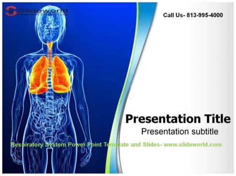 powerpoint themes lungs respiratory system powerpoint template