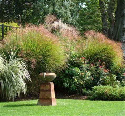 landscaping backyard landscaping ideas midwest