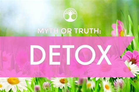 Detox Myth Or Fact by Teadesire Buy Tea Tea Desire