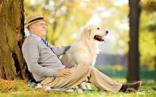 Image result for Essay dogs mans best friend