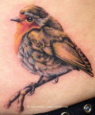 robin tattoo design 17 best images about bird inspiration on