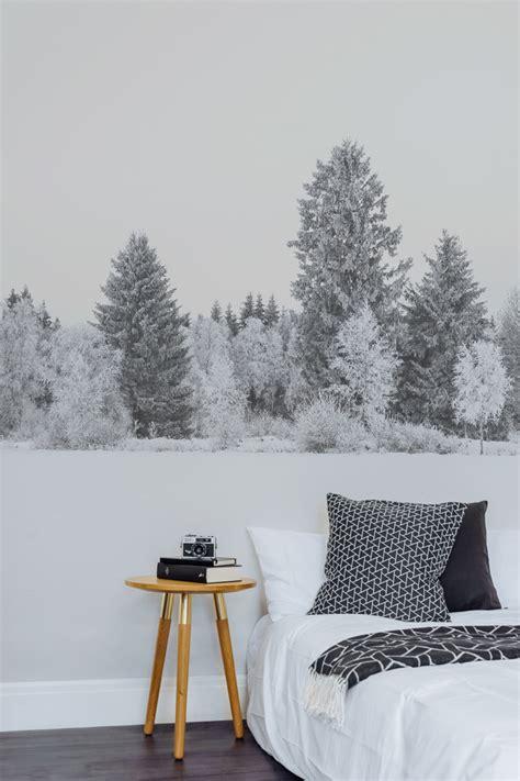 bilder nadelbäume beste schlafzimmer fototapete fotos die besten wohnideen