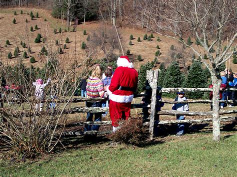 watauga county christmas tree association boone north