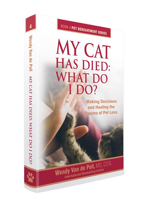 my died what do i do my cat has died what do i do center for pet loss grief