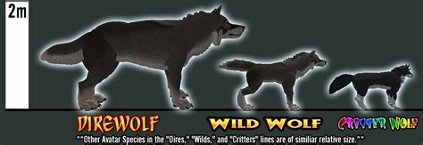 wolf size compared to wolf size comparison human www imgkid the image kid has it