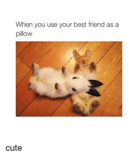 Cute Best Friend Memes - 25 best memes about friends friends memes
