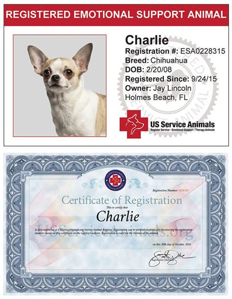 register your as an emotional support animal emotional support animal registration us support animalsussupportanimals org