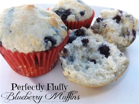 Pluffy Blueberry perfectly fluffy blueberry muffins dessert mouths easy recipes and pancakes