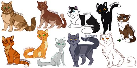 cats designs more warrior cats designs by drakynwyrm on deviantart