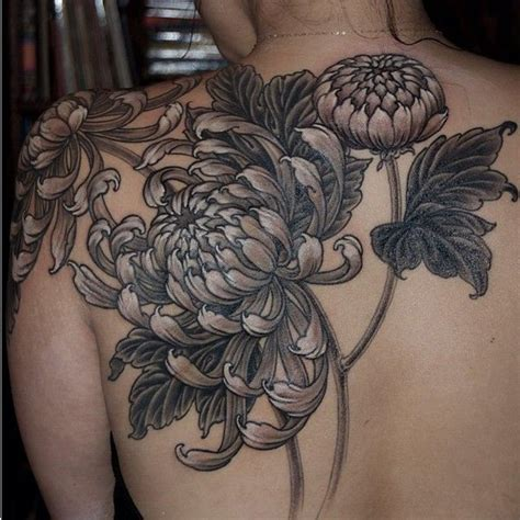 chrysanthemum tattoo design black and grey chrysanthemum www imgkid the