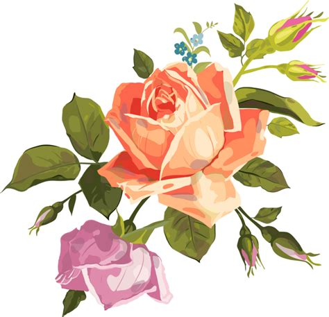 imagenes vectores png vector rose png by lupishagreydesigns on deviantart