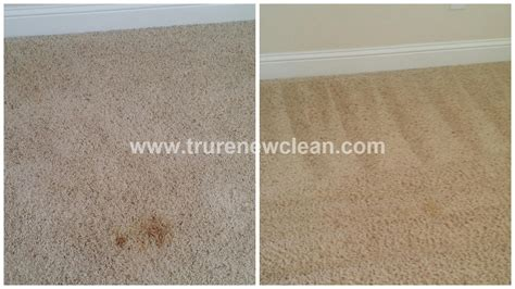 upholstery cleaning denton tx furniture stain in denton tx